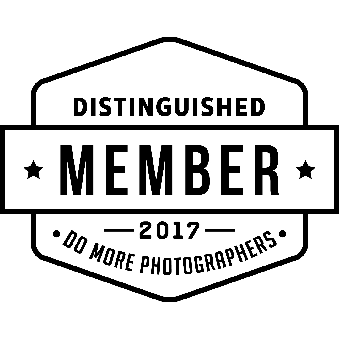 DO MORE 2017 Distinguished Member
